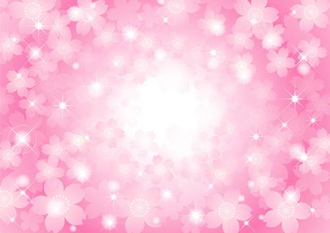 벚꽃의 프레임 32