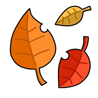 3 fallen leaves
