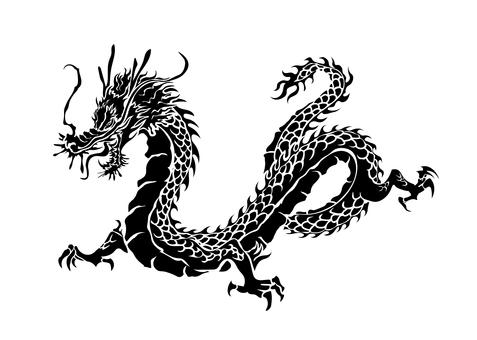 Dragon pattern silhouette 02