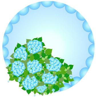 繡球花藍色系列