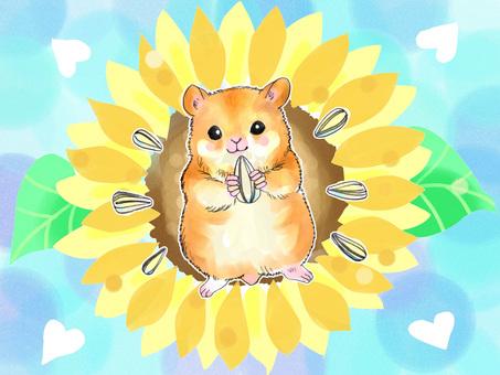 Hamster and large flower sunflower