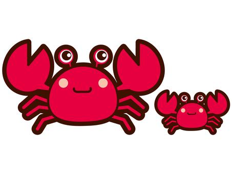 Parent and child of crab