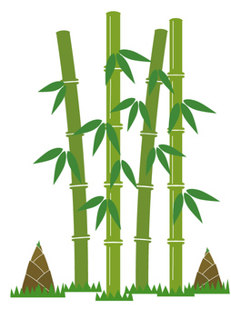 Bamboo shoots and bamboo shoots
