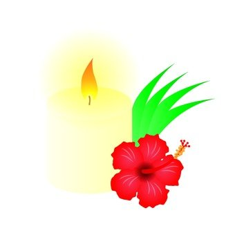 Candle and Hibiscus