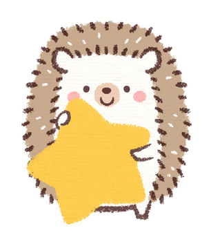 고슴도치 별