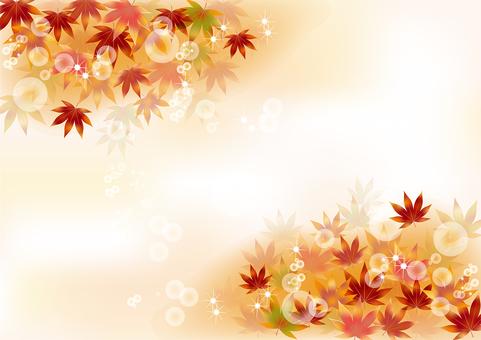 Autumn leaves 166
