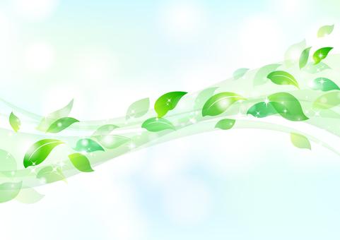 Fresh green material 16