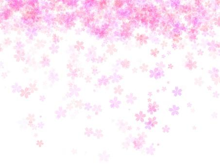 桜水彩背景2 透明