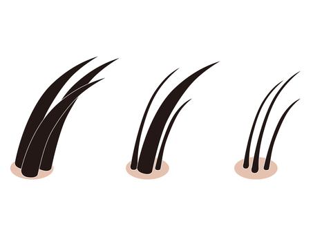 Scalp pores