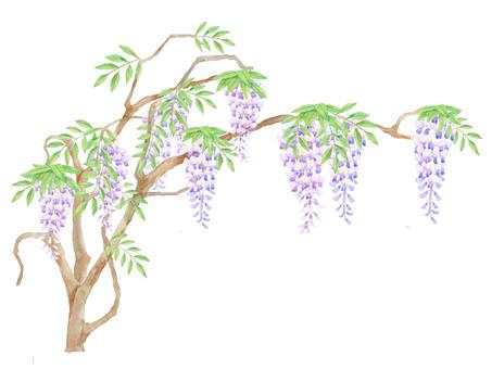 Fuyu's flower tree ★ 0104-F