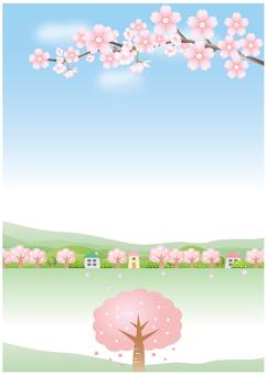 벚꽃의 풍경 세로
