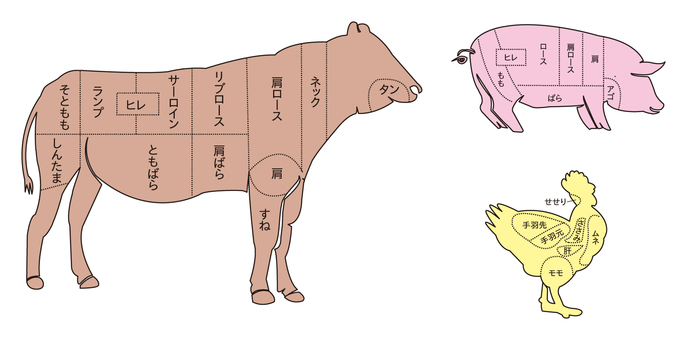 Part of meat