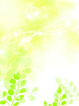 New green frame