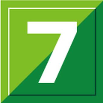Fresh green pattern 7