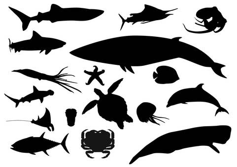 Sea creatures · Silhouette