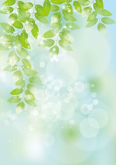 Glittering leaves & sky 65
