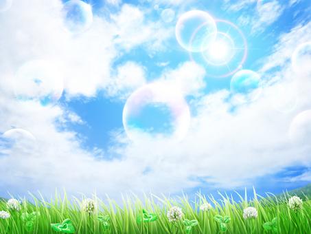 Grass White Altus Grass Blue Sky background · Wallpaper Frame 4