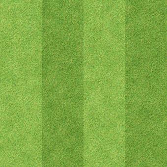 Shiba pattern 2