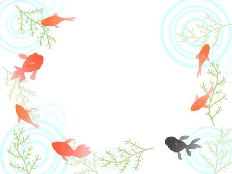 Goldfish border