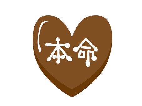 Favorite chocolate