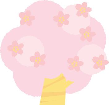 Sakura bloomed a lot