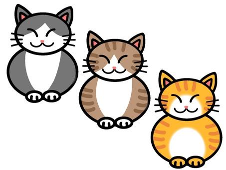 Three cats series
