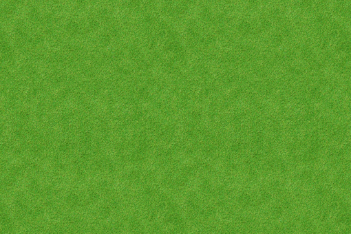 Grass background 6