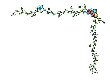 테두리, 꽃과 덩굴과 조류