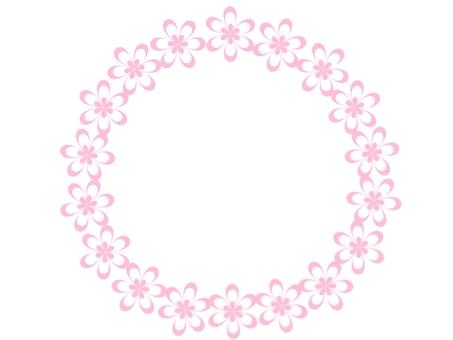 핑크 레이스