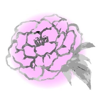 Ink painting, flower, up, pink