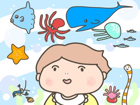 아기와 바다 생물