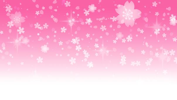 벚꽃 모티브 핑크 배경
