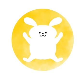 반송 흰 토끼