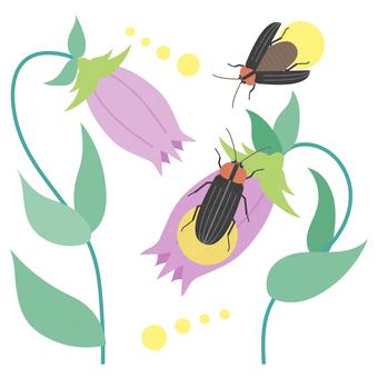 Illustration of summer _ firefly _ firefly bukuro