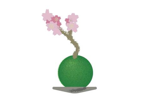Cherry blossom moss ball
