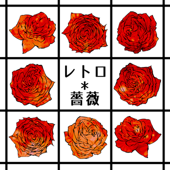 Retro * rose material 01