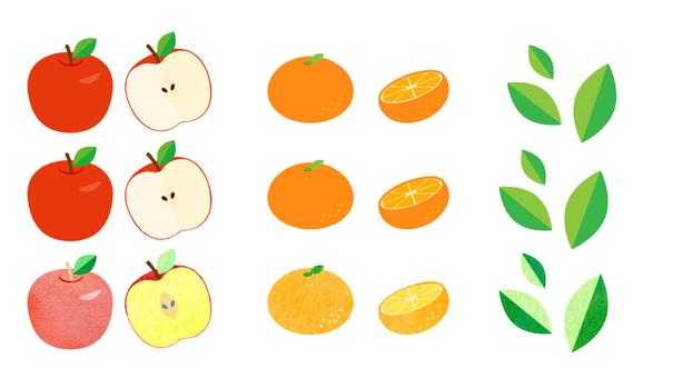 사과 _ 귤 _ 차잎