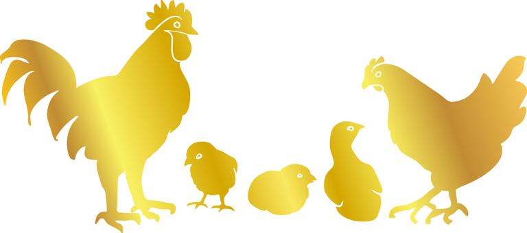 Chicken family 1