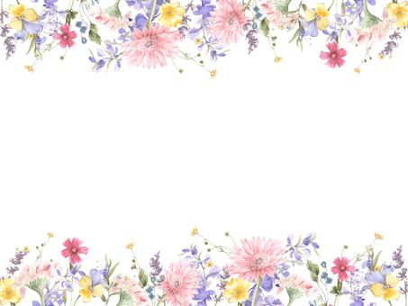 꽃 테두리 179- 거베라와 참 제비 고깔 테두리
