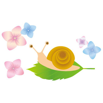 Snail and hydrangea flowers