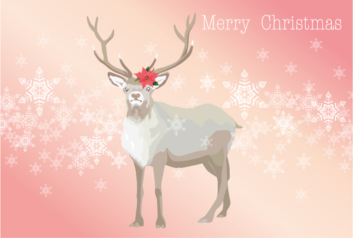 Reindeer's Christmas Card 2