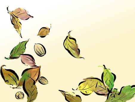 落葉的橡子