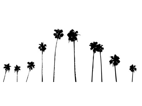 Palm trees silhouette set 2
