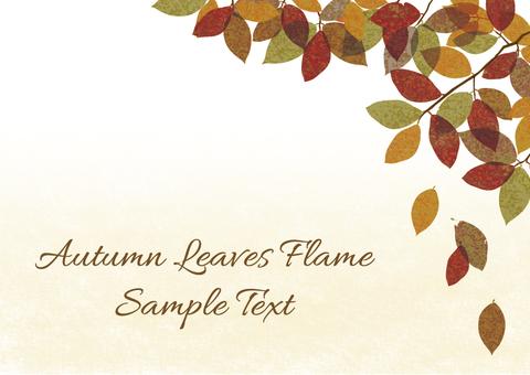 Autumn leaves 01