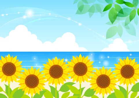 여름 이미지 소재 46