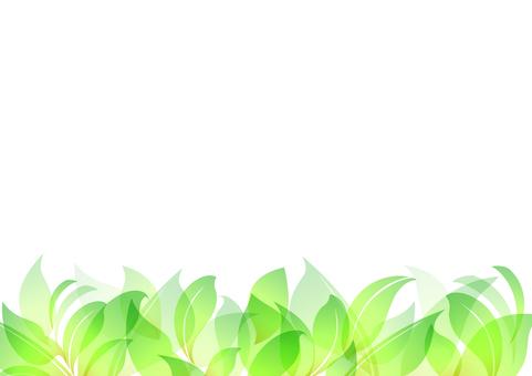 Fresh green material 53