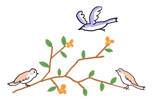 나무와 새