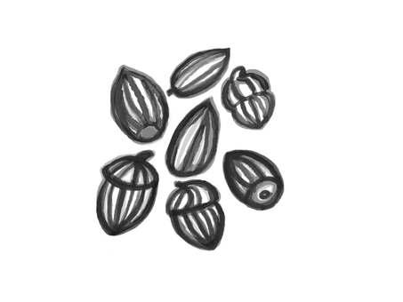 Acorn black and white