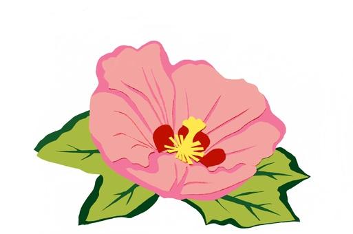 부용의 꽃