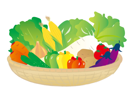 Variety of vegetables basket 2